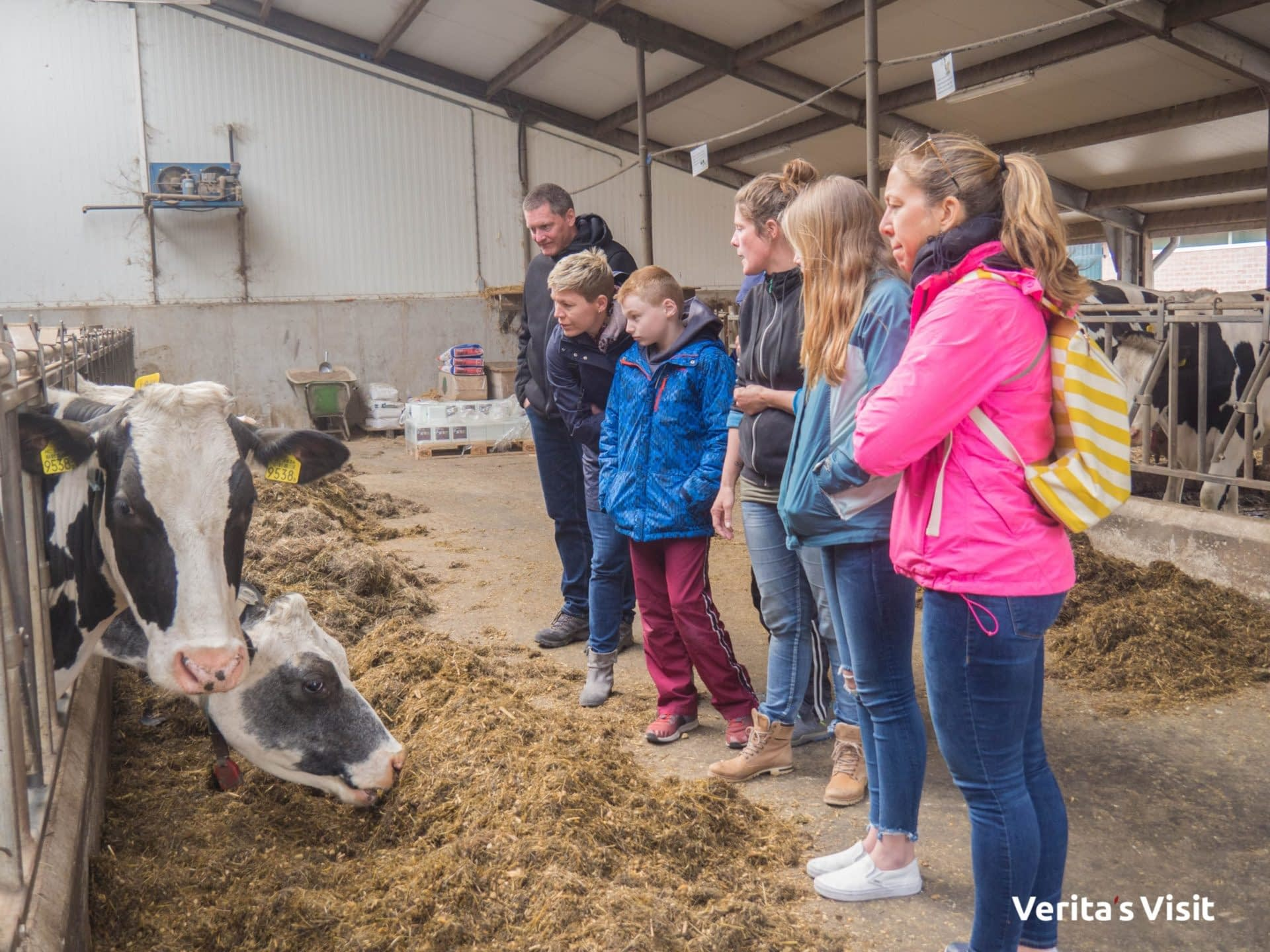 visit Gouda cheese farm Verita's Holland